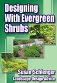 Great information on Evergreen Shrubs.