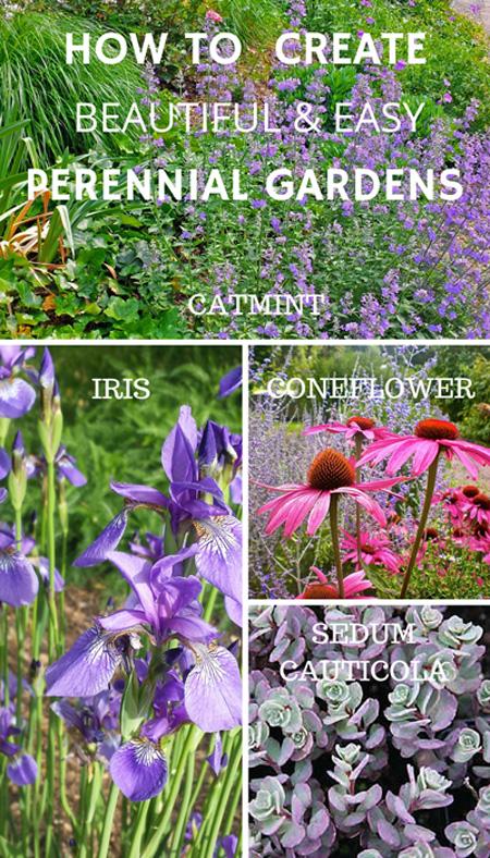 Designing a perennial garden.