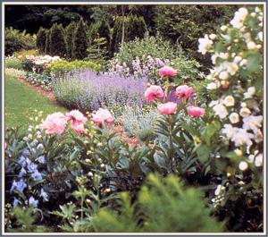 Wiswell blog gertrude jekyll for Gertrude jekyll garden designs