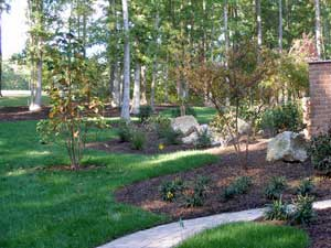 Backyard Landscaping Ideas and Ideas