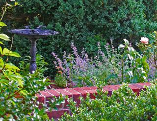 a pretty bird bath set in the planting bed