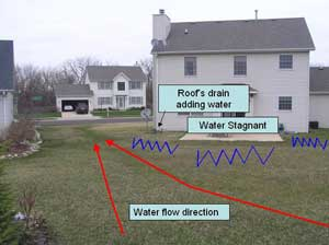 24+ Front Yard Swale