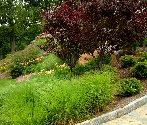 22 marvelous garden design using grasses for Using grasses in garden design