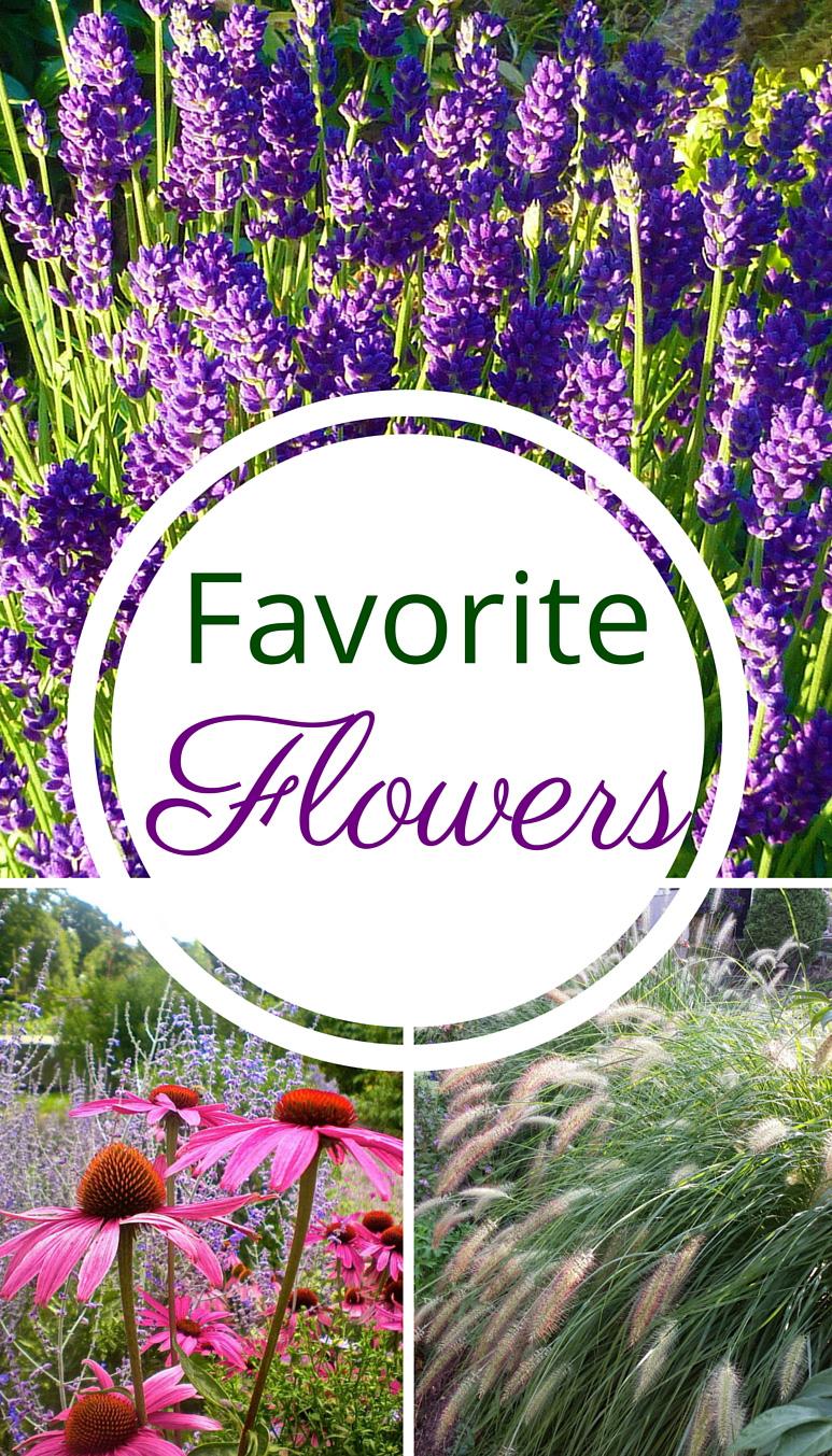 Favorite & Easy Flowers
