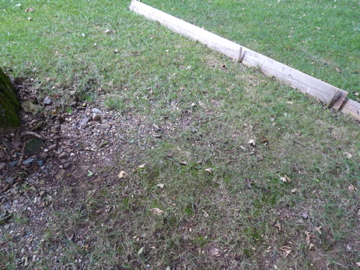 Front Yard Lawn Erosion