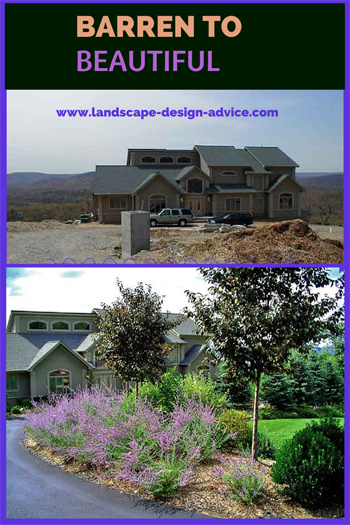 front yard design with driveway plantings