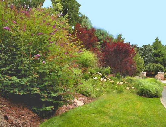 A slope with colorful plants.