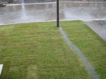 Poor Lawn Drainage