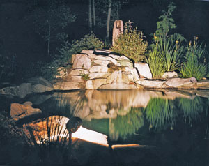 An image of a pond with outdoor lights.