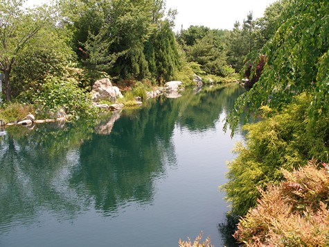 Water features formal and informal ideas and tips for Natural garden pond design