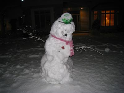 MN Snowman-  helpless to save the shrubs