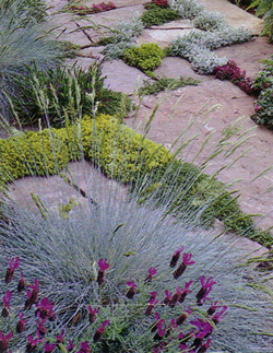 A stone path for a walkway.