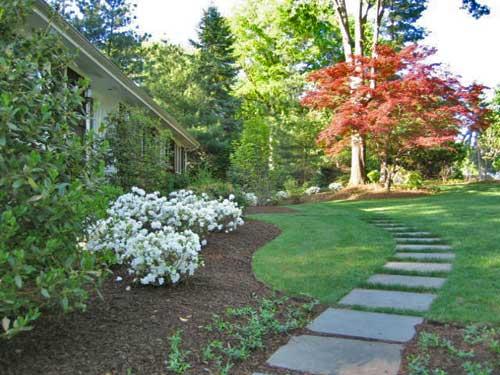 Inexpensive Stone Walkways And Types