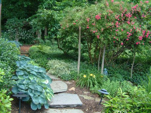 Mulch Stone Pathway