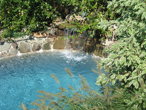 Pool with waterfall.