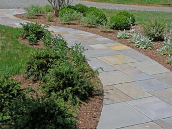 Dry laid bluestone walkway.
