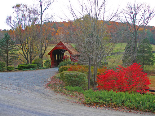 Mixed plantings at a driveway entry in the fall.