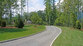 Driveway entry plantings with trees.