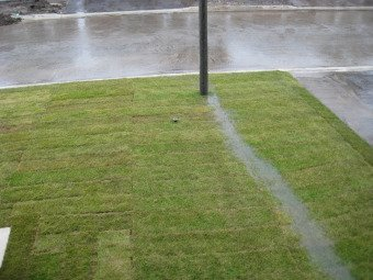Landscape Drainage Lawn And Swale Grading