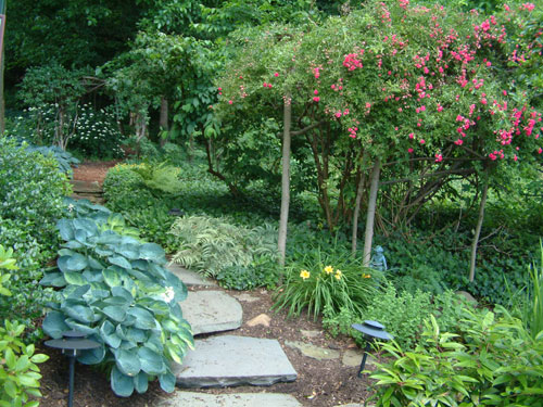 Inexpensive stone walkways and types this stone walk is made up of bluestone stone slabs i love using these there are a few choices as to what to do in between the stones workwithnaturefo